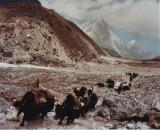 """""""Road to Everest #5"""", 2011, C-print , 73 x 90 cm (image size), 76 x 93 x 3.8 cm (framed size), Edition of 12+AP"""