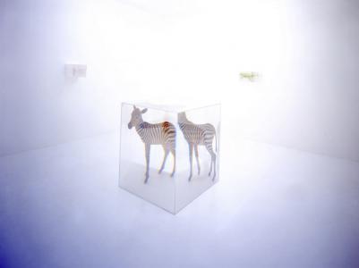"""PixCell[Zebra]"" 2003 h.103 x w.90 x d.90 cm photo : Haruo Kaneko"