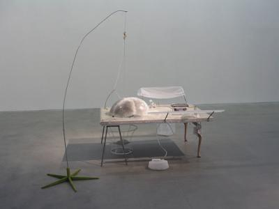"""jelly fish principle"", 2004, 195 x 168 x 148cm, mixedmedia"