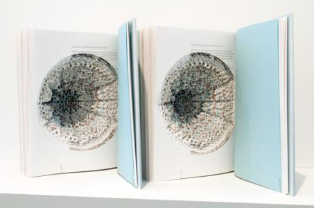 """To Perfect Lovers : Felix Gonzalez Torres"", 2009, 2 cut books, 28 x 23 x 51 cmphoto : Tsukasa YokozawaCourtesy : Lora Reynolds Gallery"