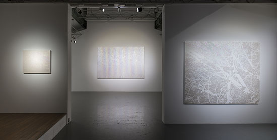 Daisuke Ohba Exhibition 2012, SCAI THE BATHHOUSE photo by Nobutada Omote