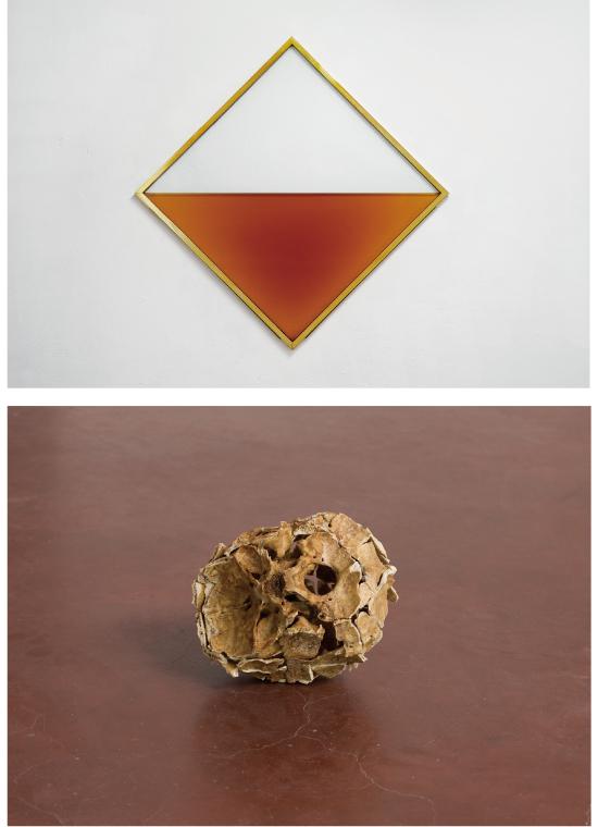 和田礼治郎《MITTAG》2015年 ブランデー 強化ガラス 真鍮 ステンレス 二酸化炭素 170 x 170 x 3.5 cm 撮影:Enric Duch | アリエル・シュレジンガー《Inside Out Skull》2014年 頭蓋骨 のり 15 x 20 x 17 cm 撮影:Elad Sarig