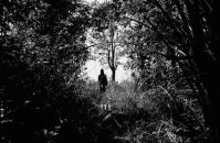 Apichatpong Weerasethakul <br>&quot;Teen at Forest, Nabua, 2008&quot; <br>2013